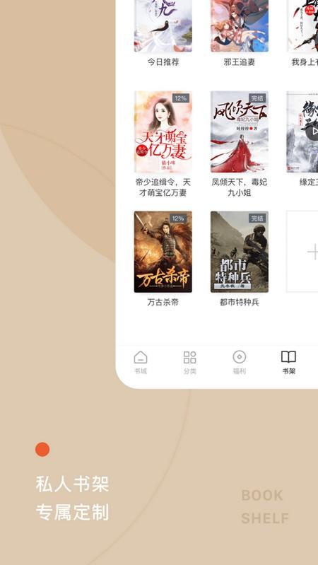 红果小说电脑版