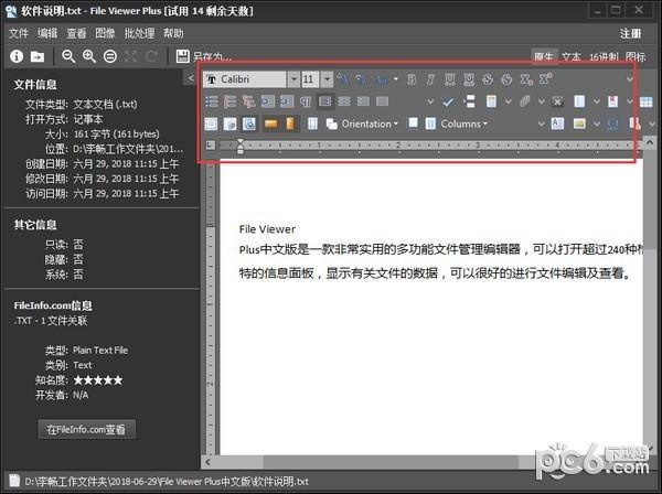 file viewer plus中文版