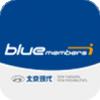 北京现代bluemembers